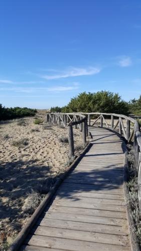 Natural Park Migliarino San Rossore